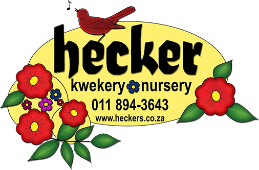 Hecker Nursery